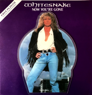 "Whitesnake - Now You're Gone (7"") (Shaped Picture Disc) (VG-/VG)"